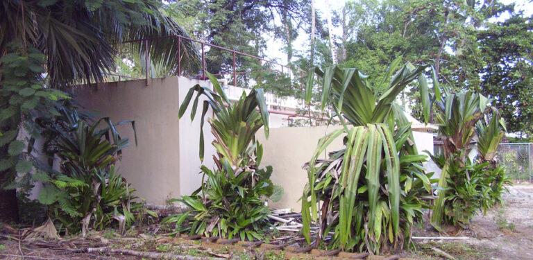 Planta Tratamiento Don Cesar Las Terrenas 10